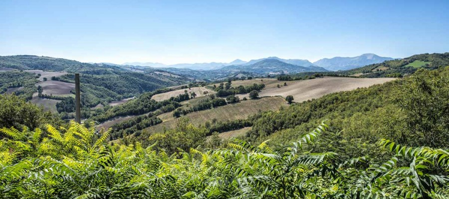 camattei-luxury-design-villa-Holidayhome-holiday-Italy-Toscany-Marche-welcome-views